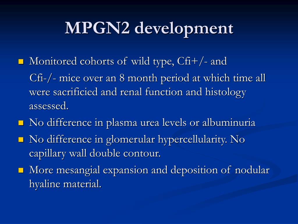 MPGN2 development