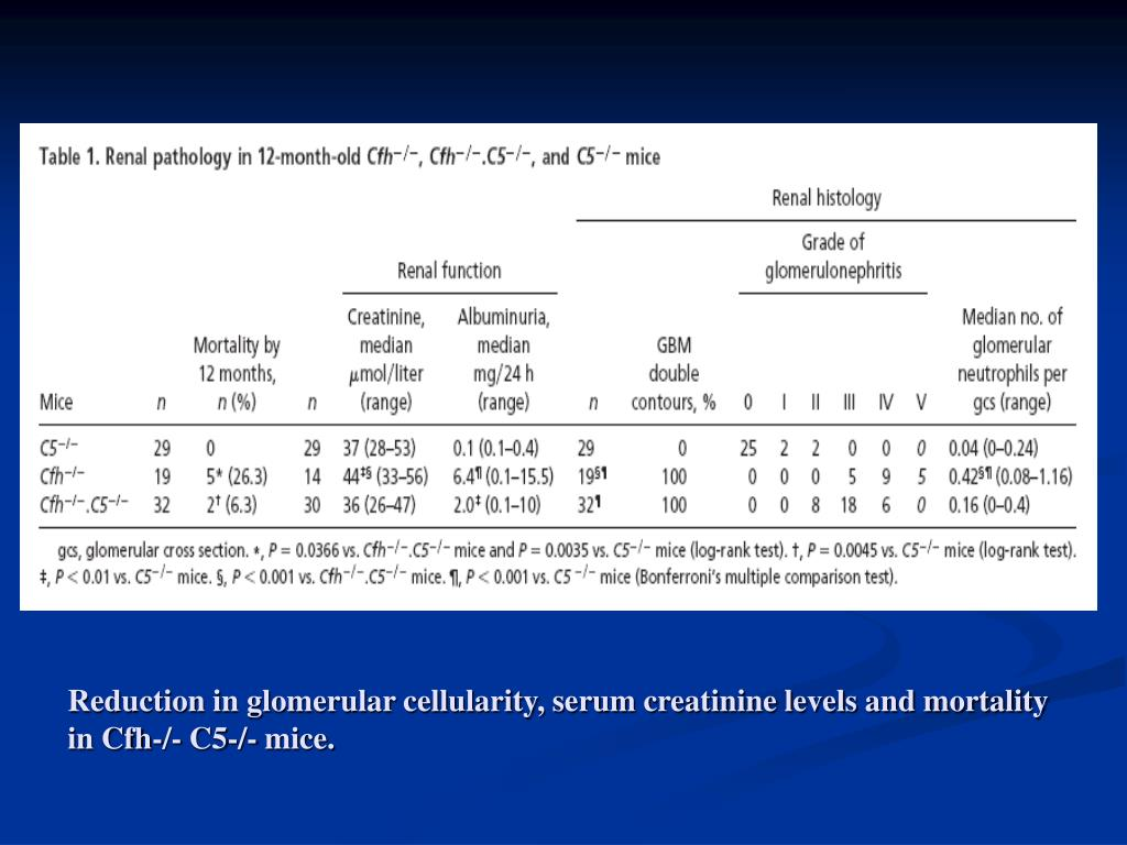 Reduction in glomerular cellularity, serum creatinine levels and mortality in Cfh-/- C5-/- mice.