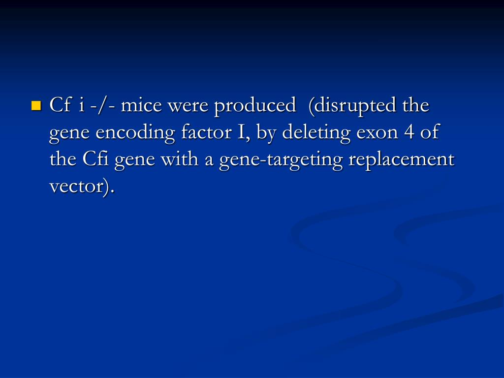 Cf i -/- mice were produced  (disrupted the gene encoding factor I, by deleting exon 4 of the Cfi gene with a gene-targeting replacement vector).