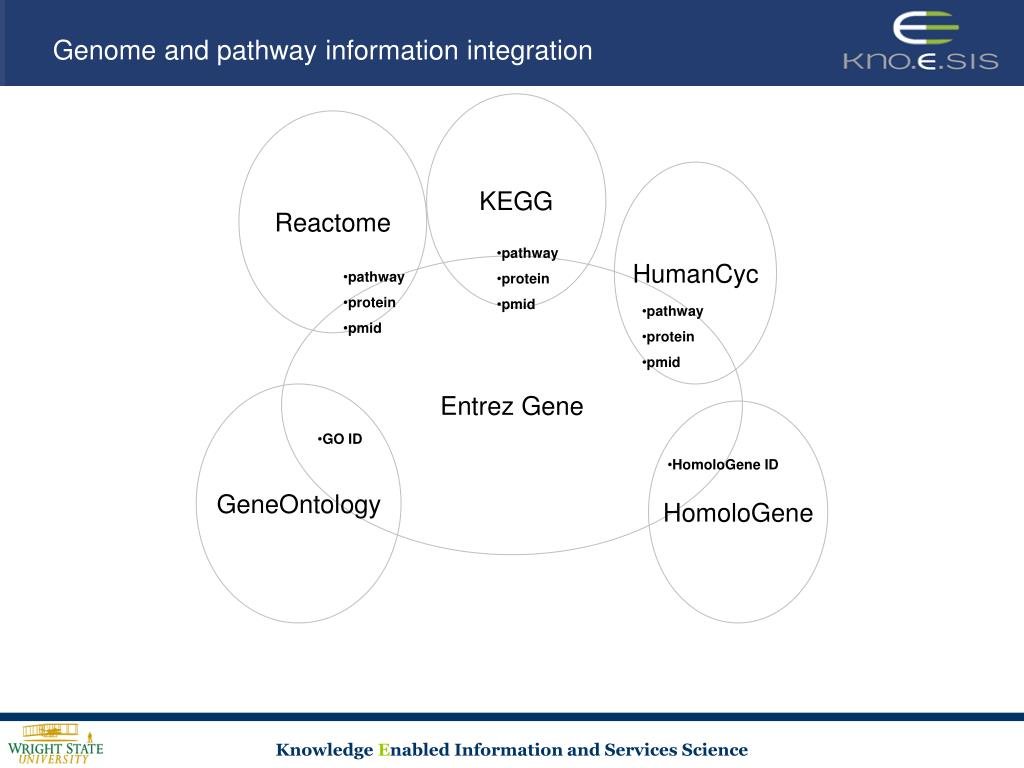 Genome and pathway information integration