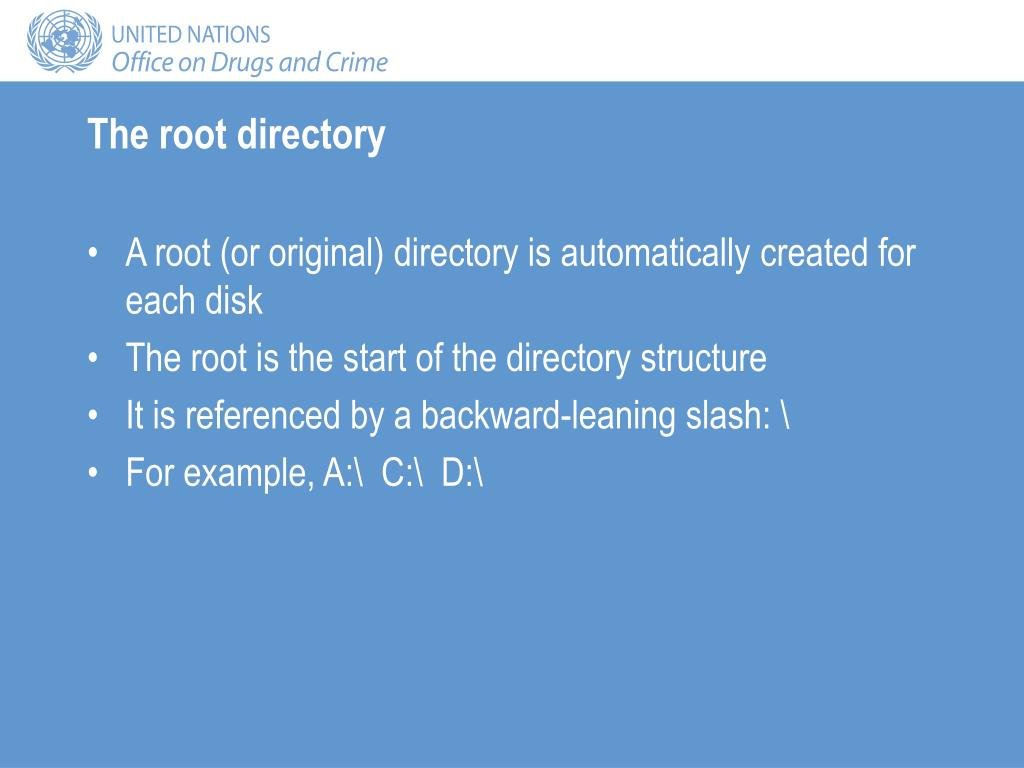 The root directory
