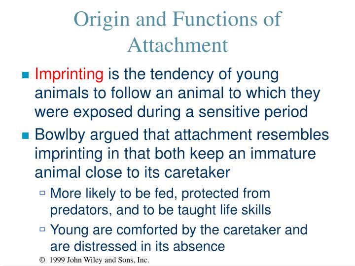 Origin and Functions of Attachment