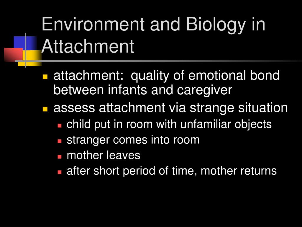 Environment and Biology in Attachment