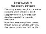 blood supply to respiratory surfaces