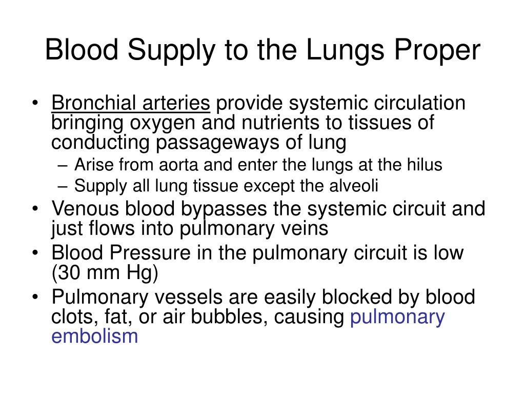 Blood Supply to the Lungs Proper