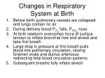 changes in respiratory system at birth