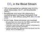 co 2 in the blood stream