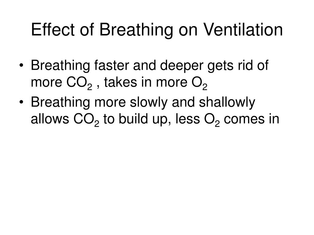 Effect of Breathing on Ventilation