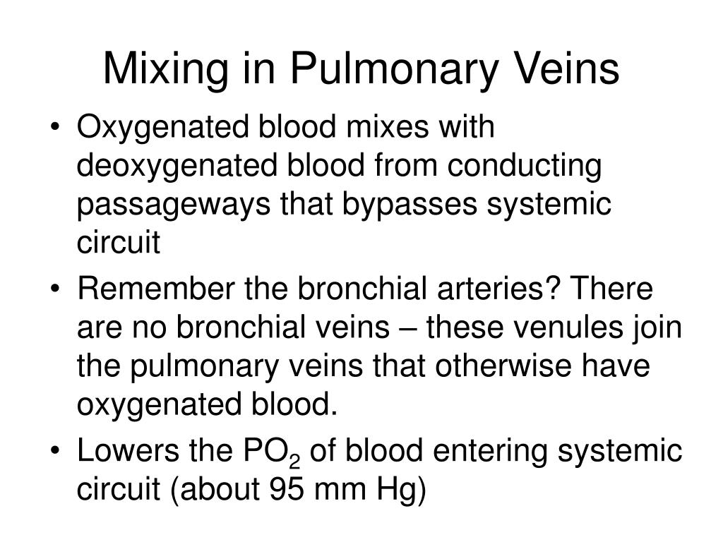 Mixing in Pulmonary Veins