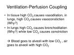 ventilation perfusion coupling