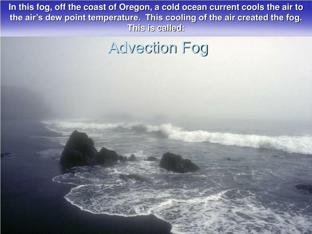 In this fog, off the coast of Oregon, a cold ocean current cools the air to the air's dew point temperature.  This cooling of the air created the fog. This is called: