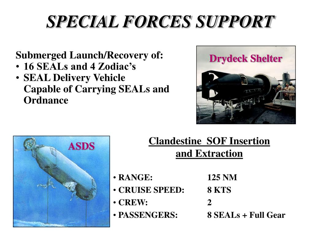 SPECIAL FORCES SUPPORT