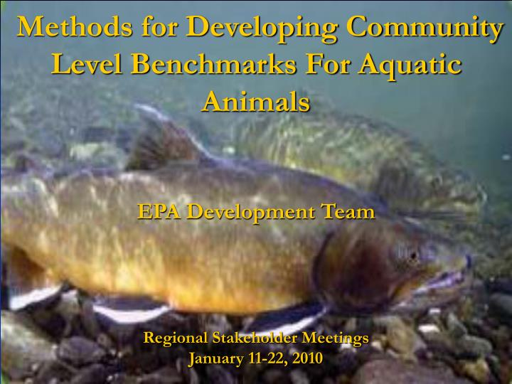 Methods for developing community level benchmarks for aquatic animals l.jpg