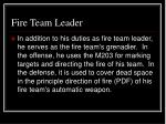 fire team leader16