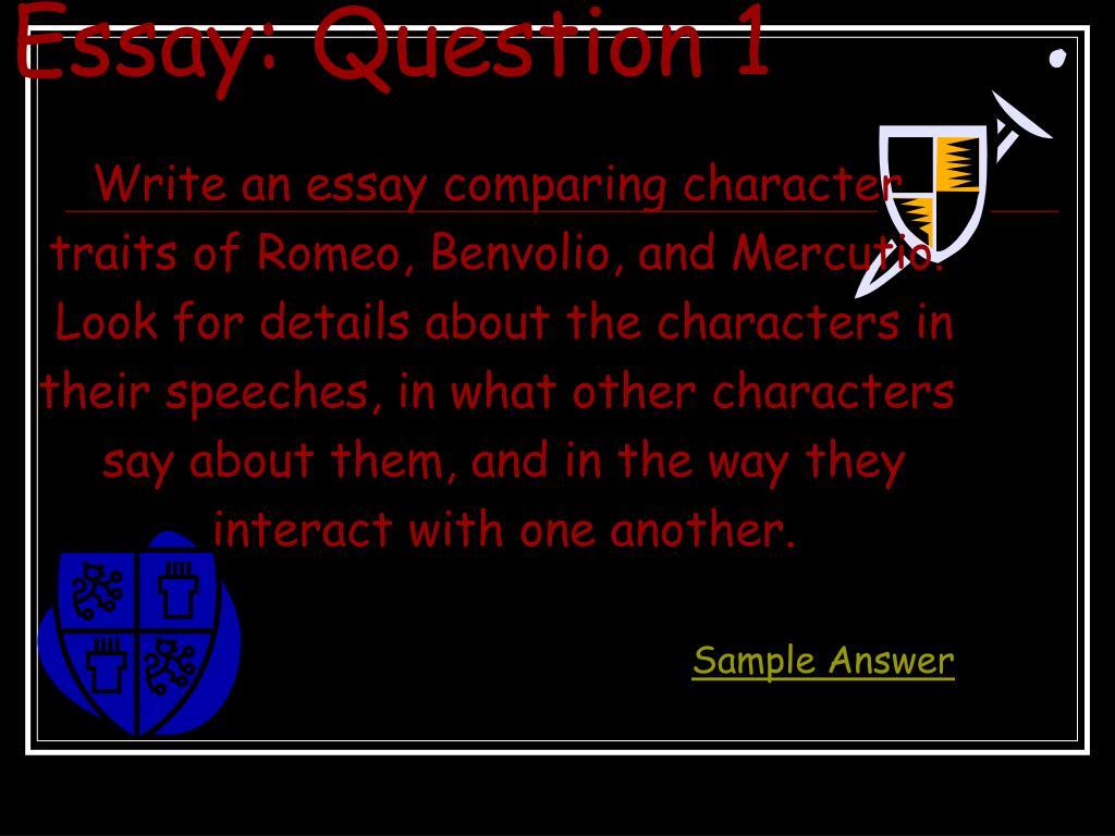 Essay: Question 1