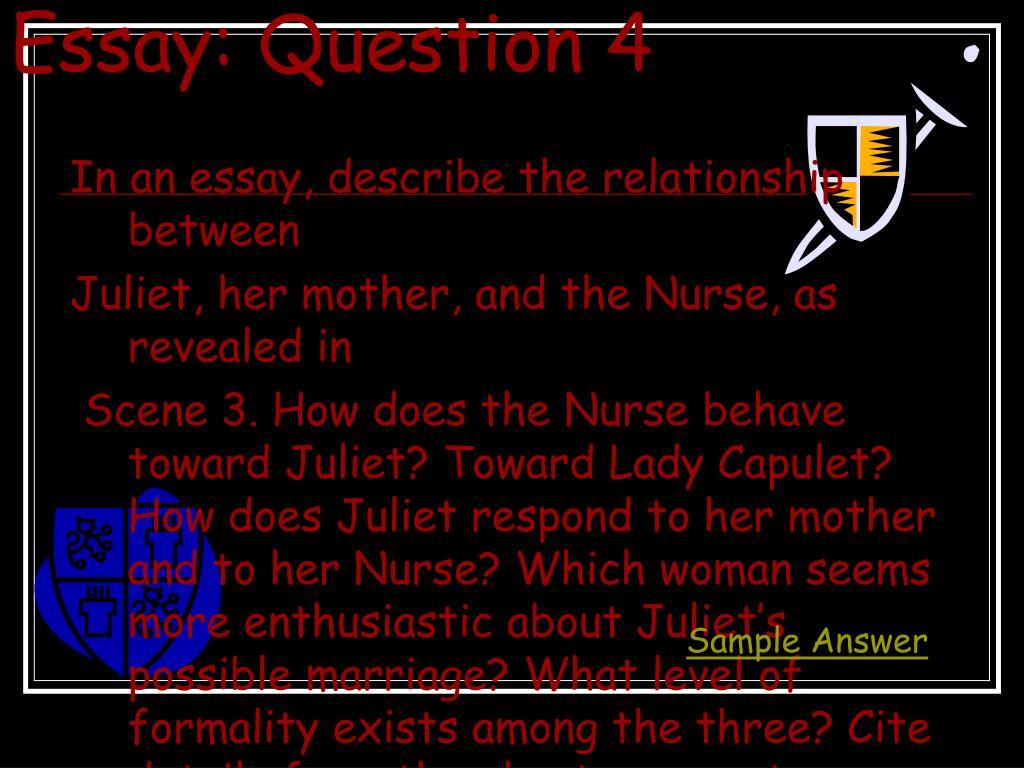 Essay: Question 4