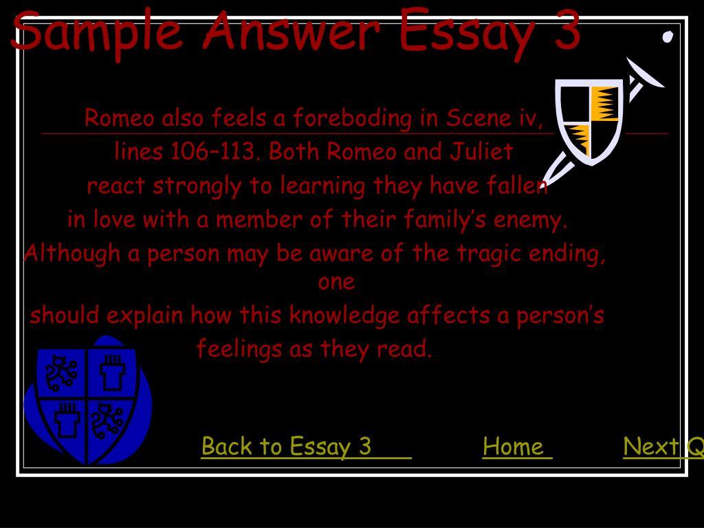 Sample Answer Essay 3