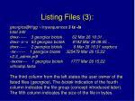 listing files 3
