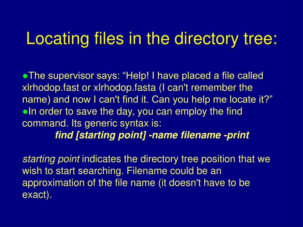 "The supervisor says: ""Help! I have placed a file called xlrhodop.fast or xlrhodop.fasta (I can't remember the name) and now I can't find it. Can you help me locate it?"""