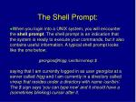 the shell prompt
