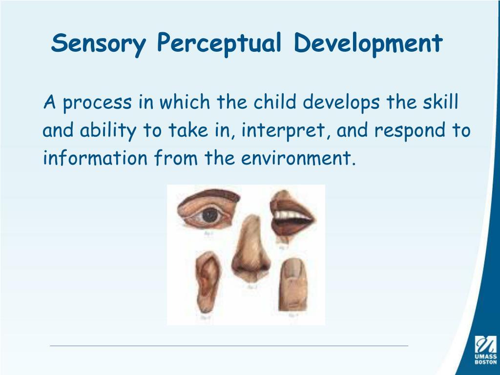 Sensory Perceptual Development