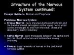 structure of the nervous system continued