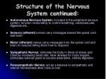 structure of the nervous system continued7