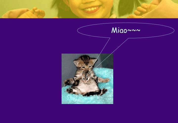 Miao~~~