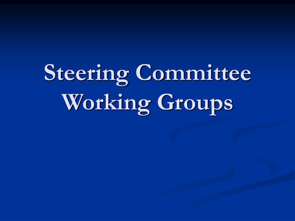 Steering Committee Working Groups