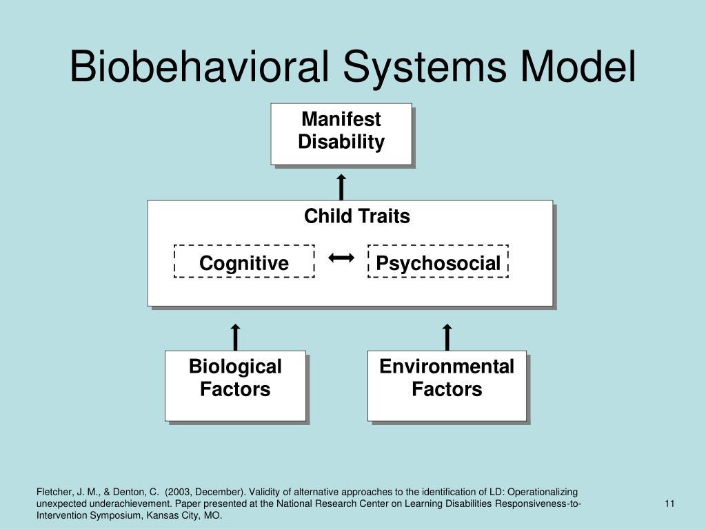 Biobehavioral Systems Model