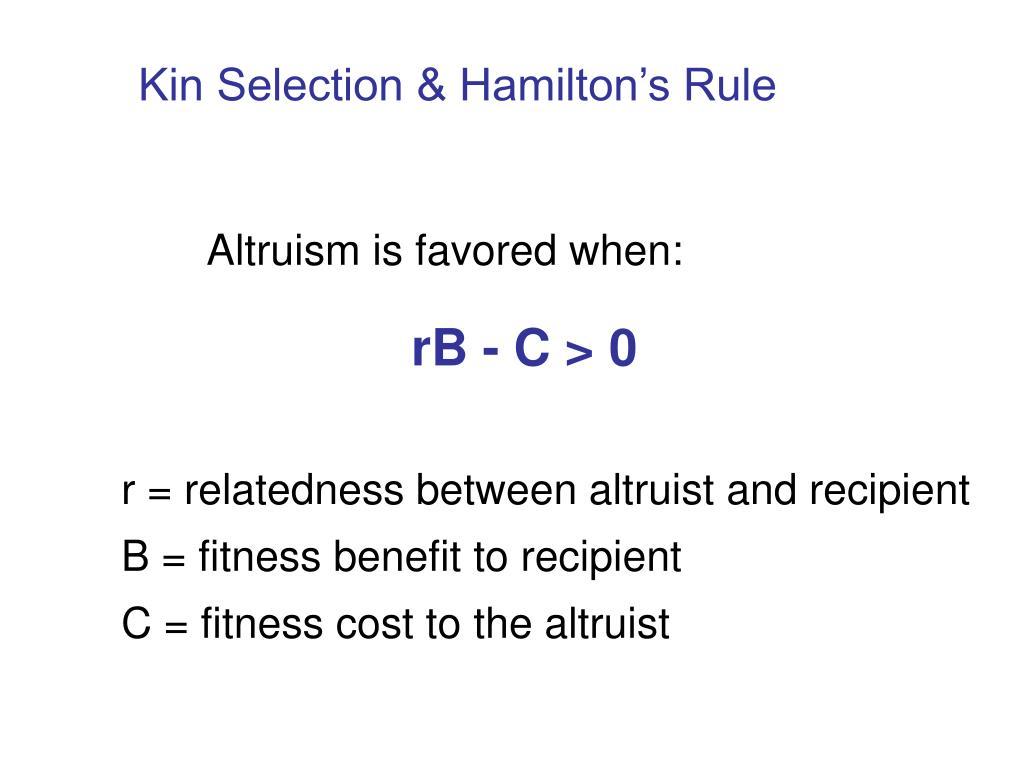 Kin Selection & Hamilton's Rule