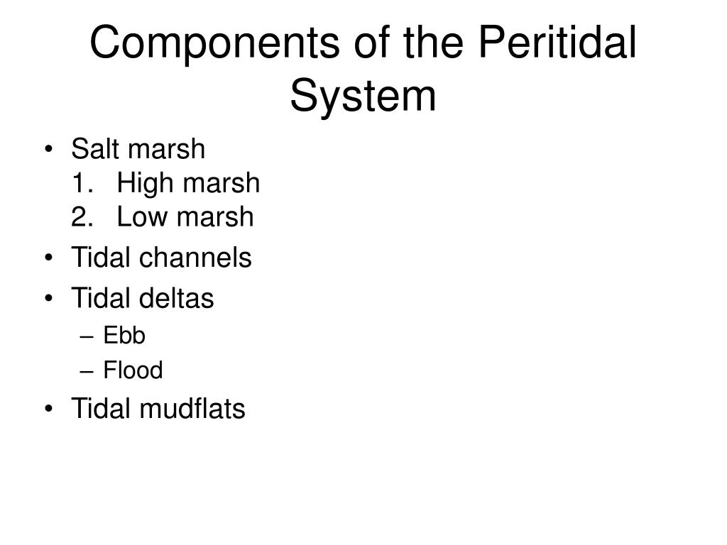 Components of the Peritidal System