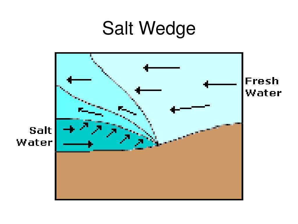Salt Wedge