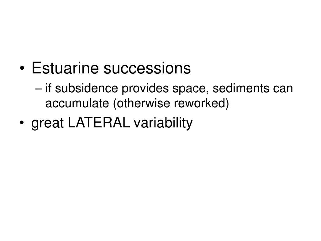 Estuarine successions