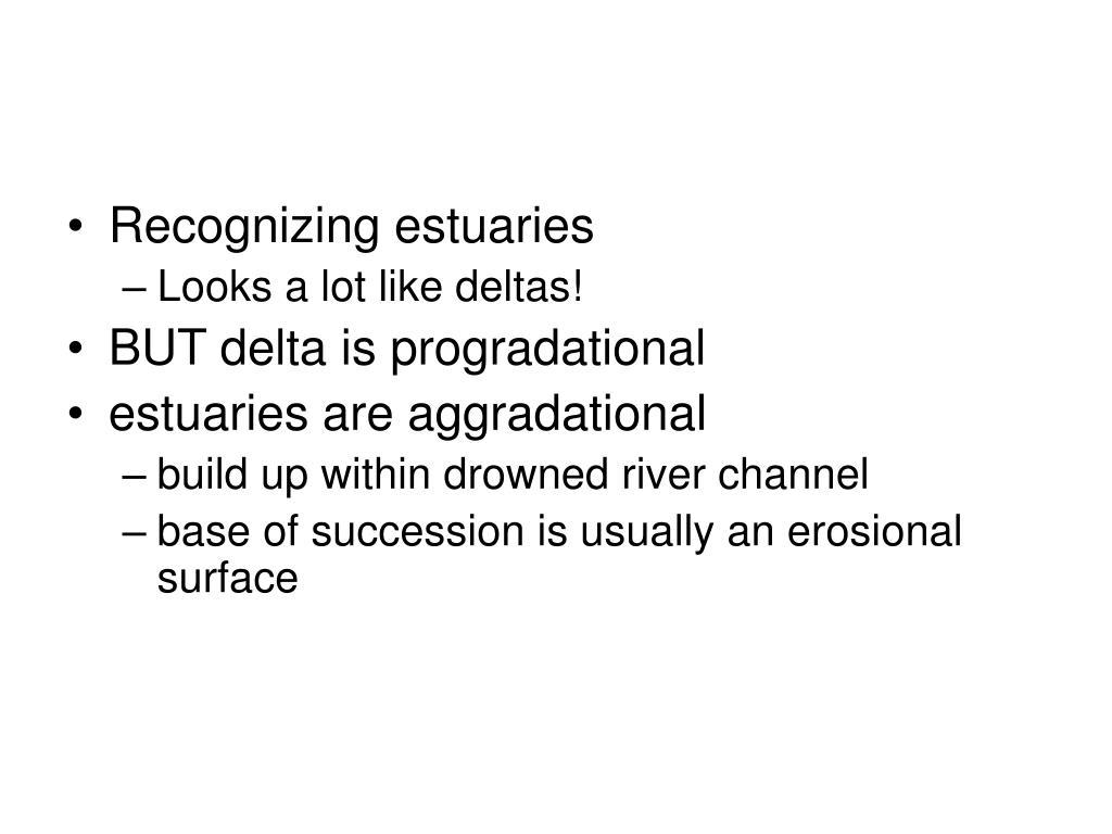 Recognizing estuaries