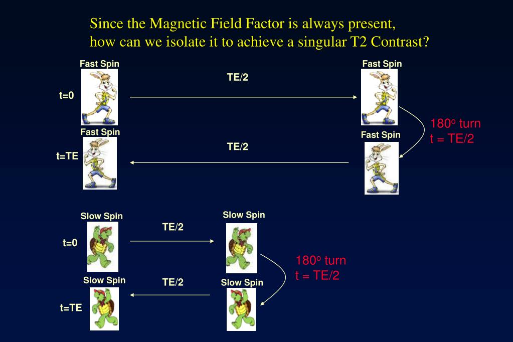 Since the Magnetic Field Factor is always present,