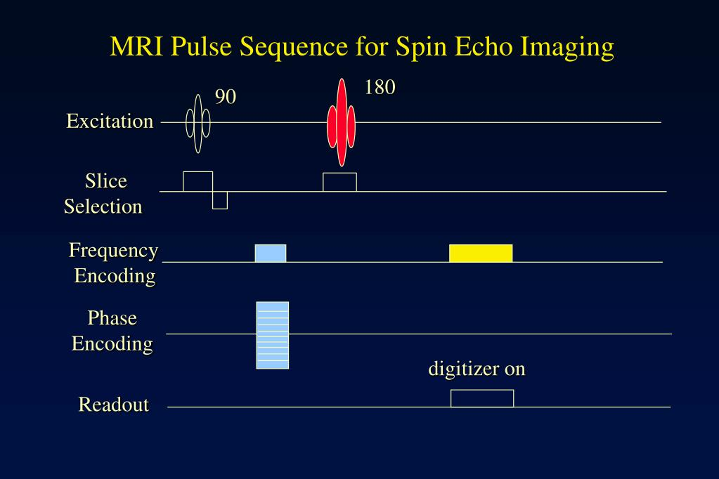 MRI Pulse Sequence for Spin Echo Imaging