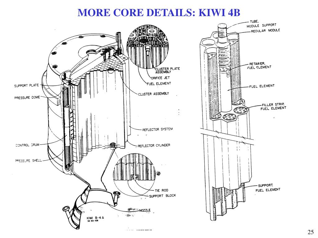 MORE CORE DETAILS: KIWI 4B
