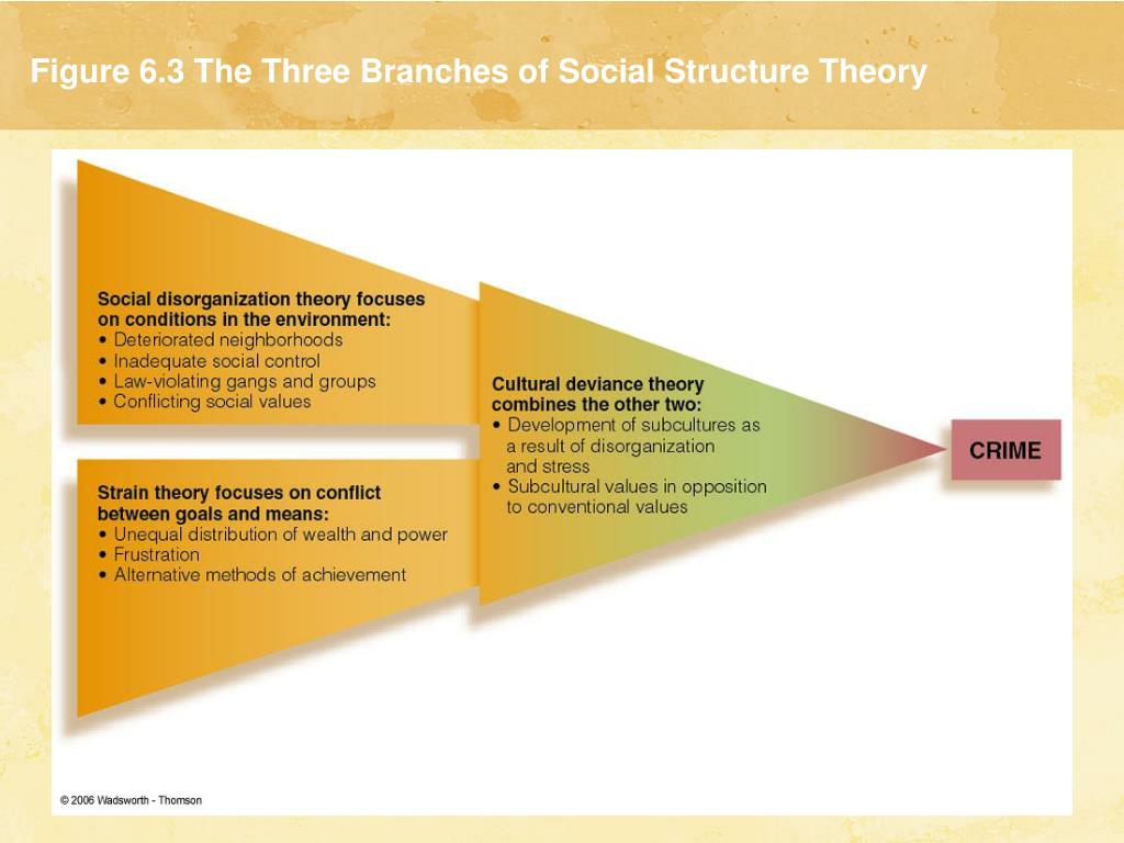 Figure 6.3 The Three Branches of Social Structure Theory