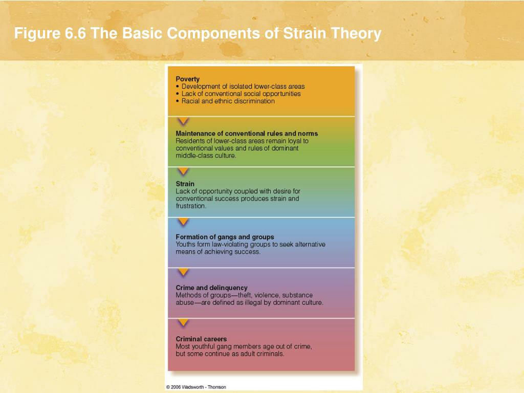 Figure 6.6 The Basic Components of Strain Theory