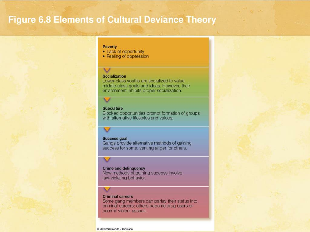 Figure 6.8 Elements of Cultural Deviance Theory