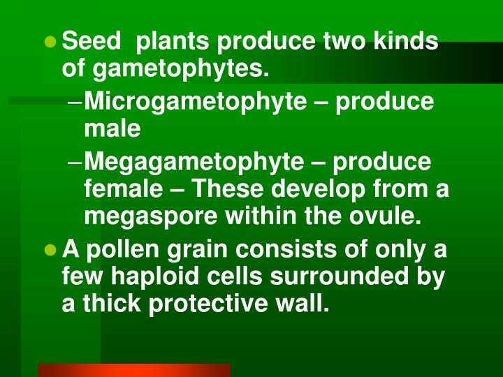 Seed  plants produce two kinds of gametophytes.