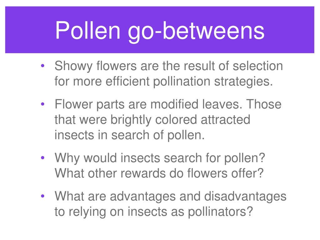 Pollen go-betweens
