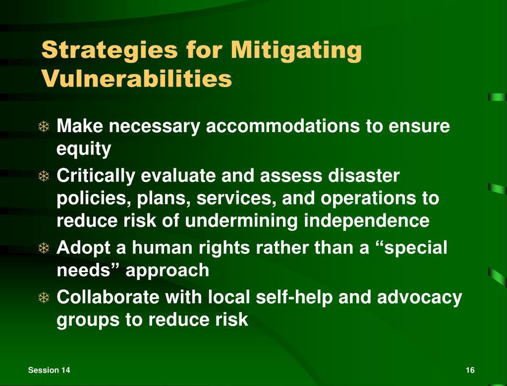 Strategies for Mitigating Vulnerabilities