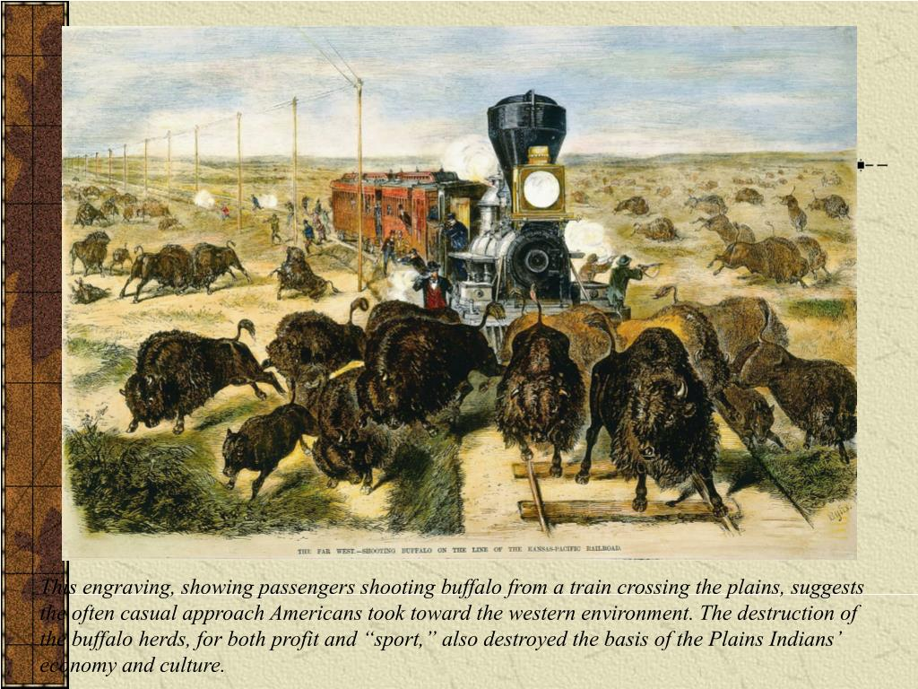 """This engraving, showing passengers shooting buffalo from a train crossing the plains, suggests the often casual approach Americans took toward the western environment. The destruction of the buffalo herds, for both profit and """"sport,"""" also destroyed the basis of the Plains Indians' economy and culture."""