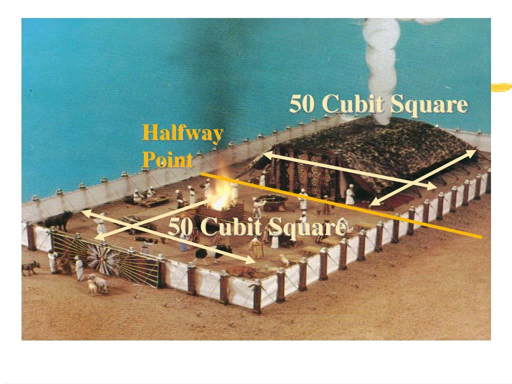 50 Cubit Square