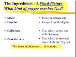 the ingredients a word picture what kind of prayer reaches god