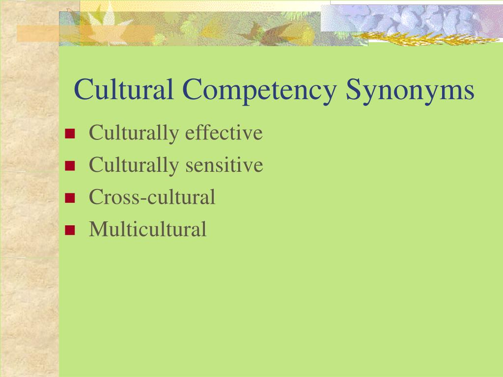 Cultural Competency Synonyms