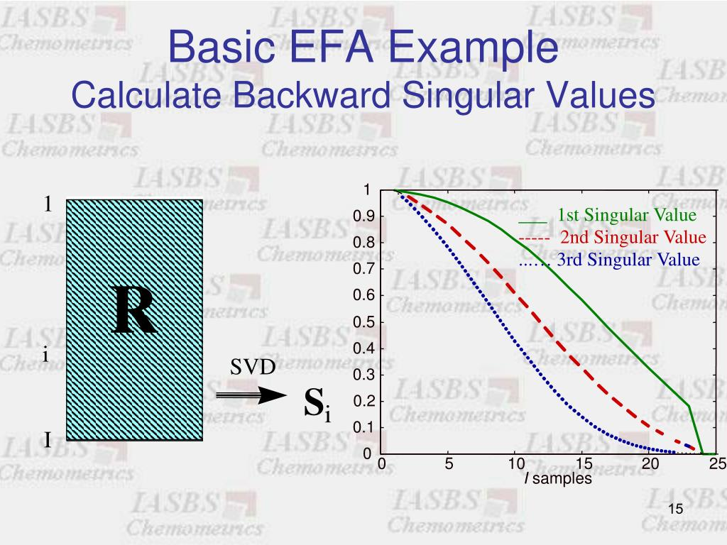 Basic EFA Example
