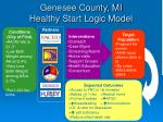 genesee county mi healthy start logic model